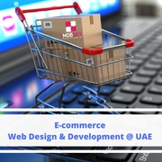Enhancing business with our Web Design & Development Services in UAE